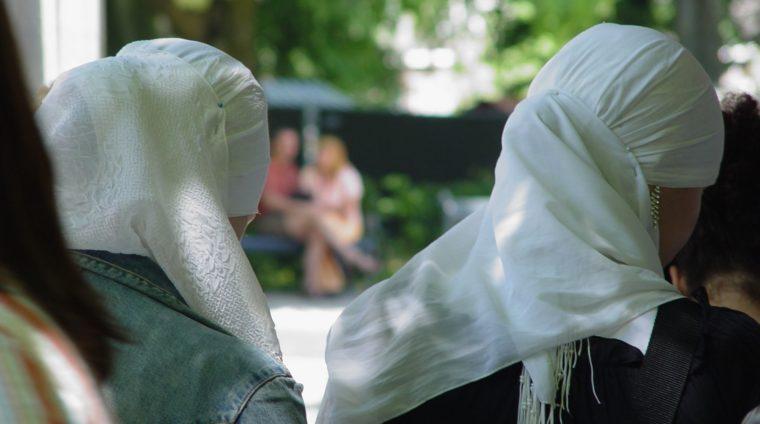Afbeelding bij Publicatie Syriërs in Nederland door SCP