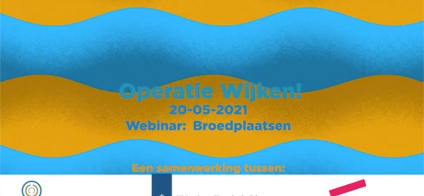 Afbeelding bij Operatie Wijken: Webinar Broedplaatsen 20 mei